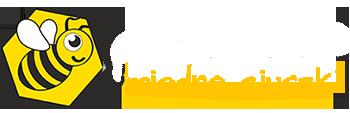 logo pszczółka miode ciuszki second hand